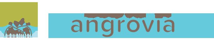 MangroviaIoT